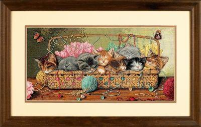 35184DMS Новорожденные котята (Dimensions, Dimensions)