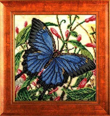 B407 Летящее совершенство (Кроше, Кроше) канва с рисунком для вышивания бисером hobby