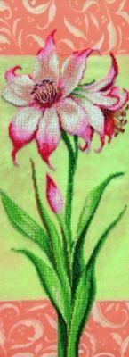 Б712 Гиппеаструм розовый чм (Чарiвна Мить, Чарiвна Мить) канва с рисунком для вышивания бисером hobby