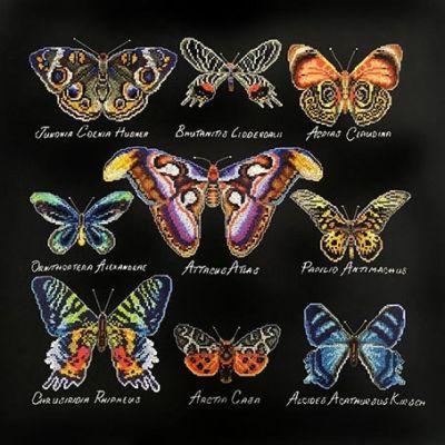 14.001.08 Бабочки (МИ) (Марья искусница, Марья искусница) княжна марья 2018 08 07t16 00