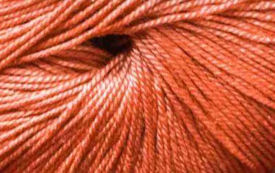 Успешная 220м Цвет.285 Морковь (Пехорка, Пехорка)