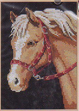 6974DMS Любимый пони (Dimensions, Dimensions) набор для вышивания крестом rto котенок с подарком 10 х 10 см