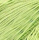 Успешная 220м Цвет.09 Зеленое яблоко (Пехорка, Пехорка) успешная 220м цвет 178 светлосиреневый пехорка пехорка