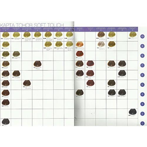 Concept Карта тонов с локонами Soft Touch (с фото) (Concept, Окрашивание) concept club 10200200197